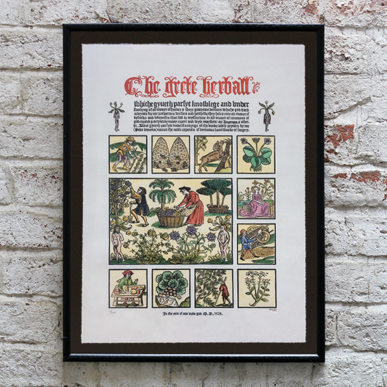 The Grete Herball - framed